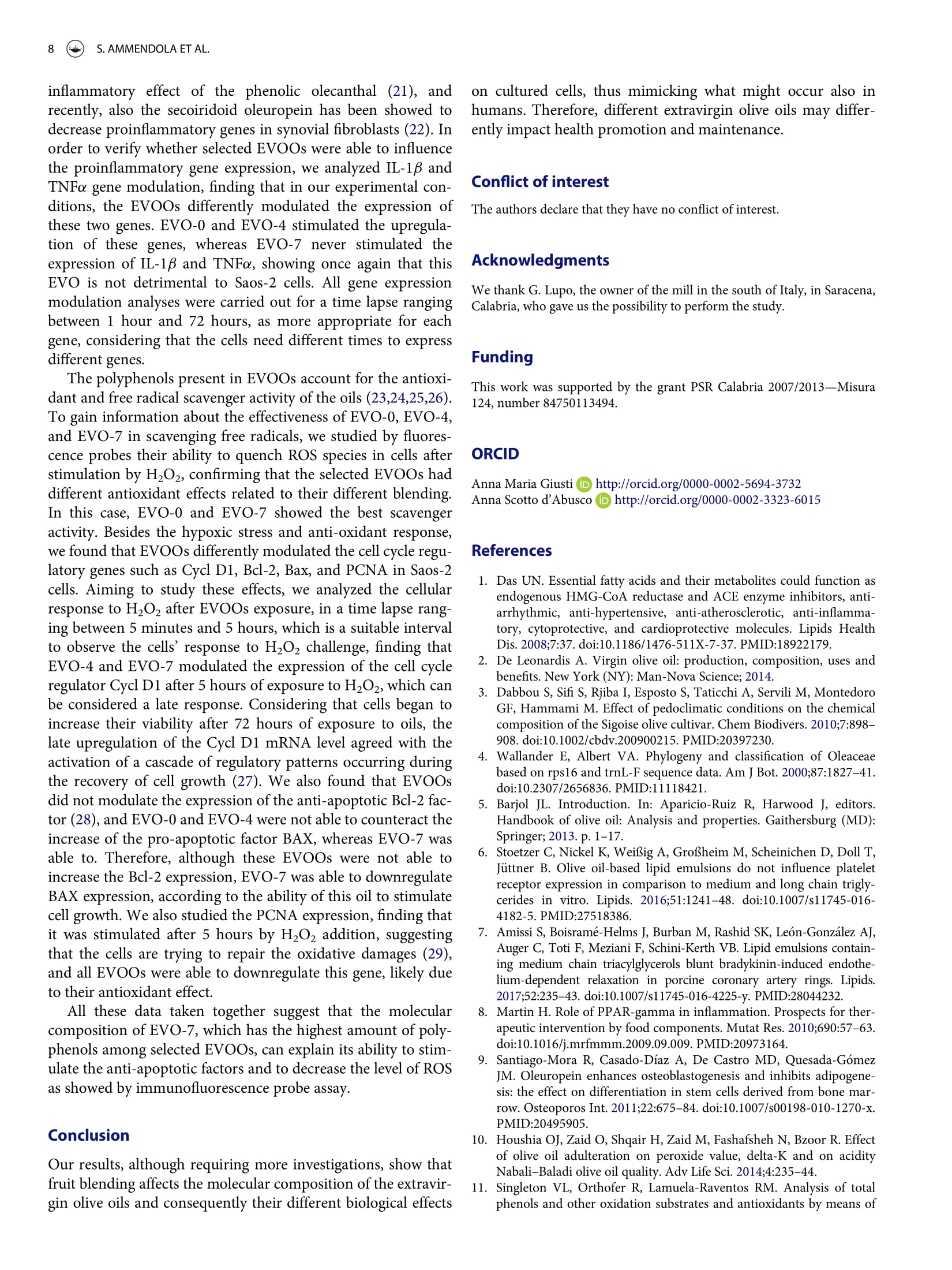 Olio EVO di Saracena CS, Vendita Olio d'Oliva ExtraVergine Biologico Certificato, Olio di Oliva ExtraVergine Biologico Estratto a Freddo